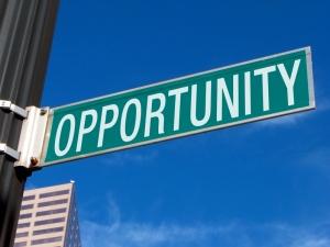 peluang usaha